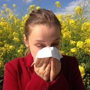 Cómo diferenciar una alergia de un resfriado
